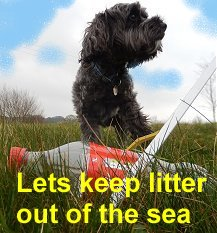 Less Litter equals Less Plastic Pollution