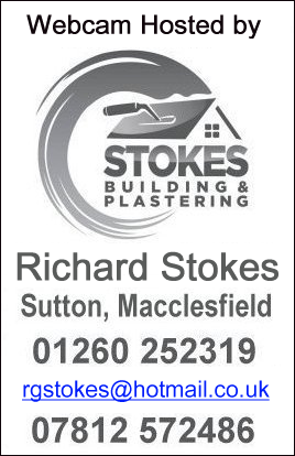 Stokes Building and Plastering